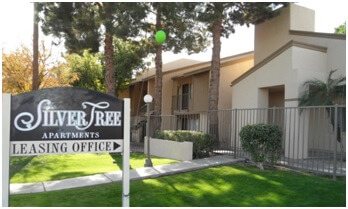 Silver Tree Apartments
